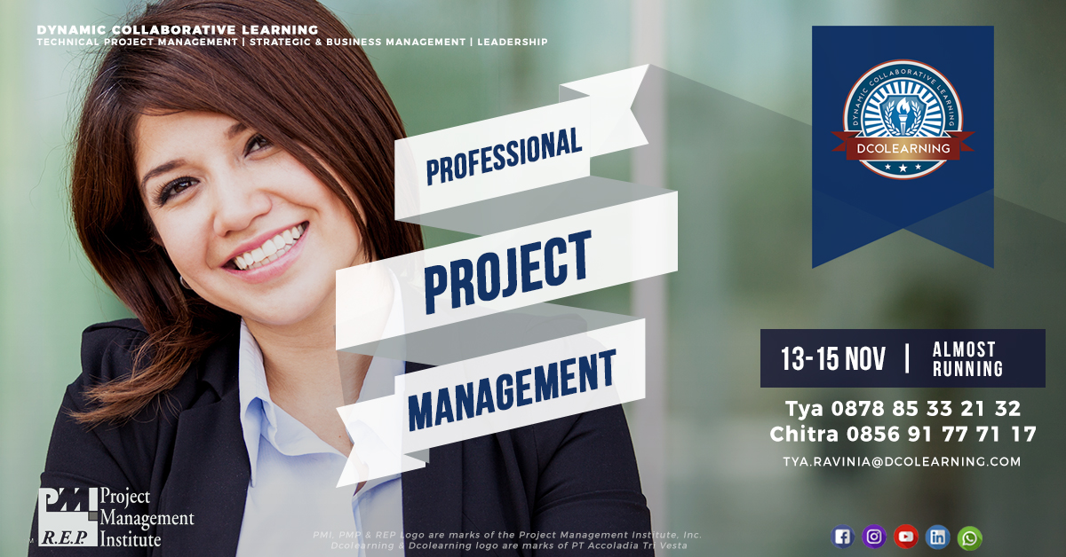 Professional Project Management - November 2017