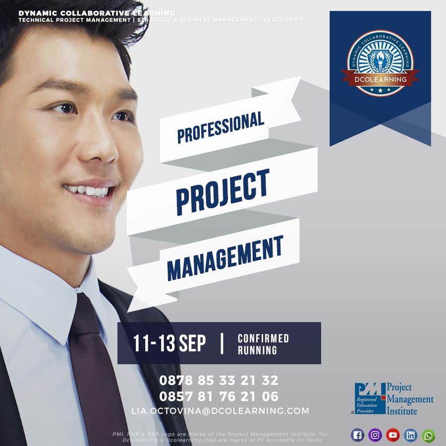 Professional PM