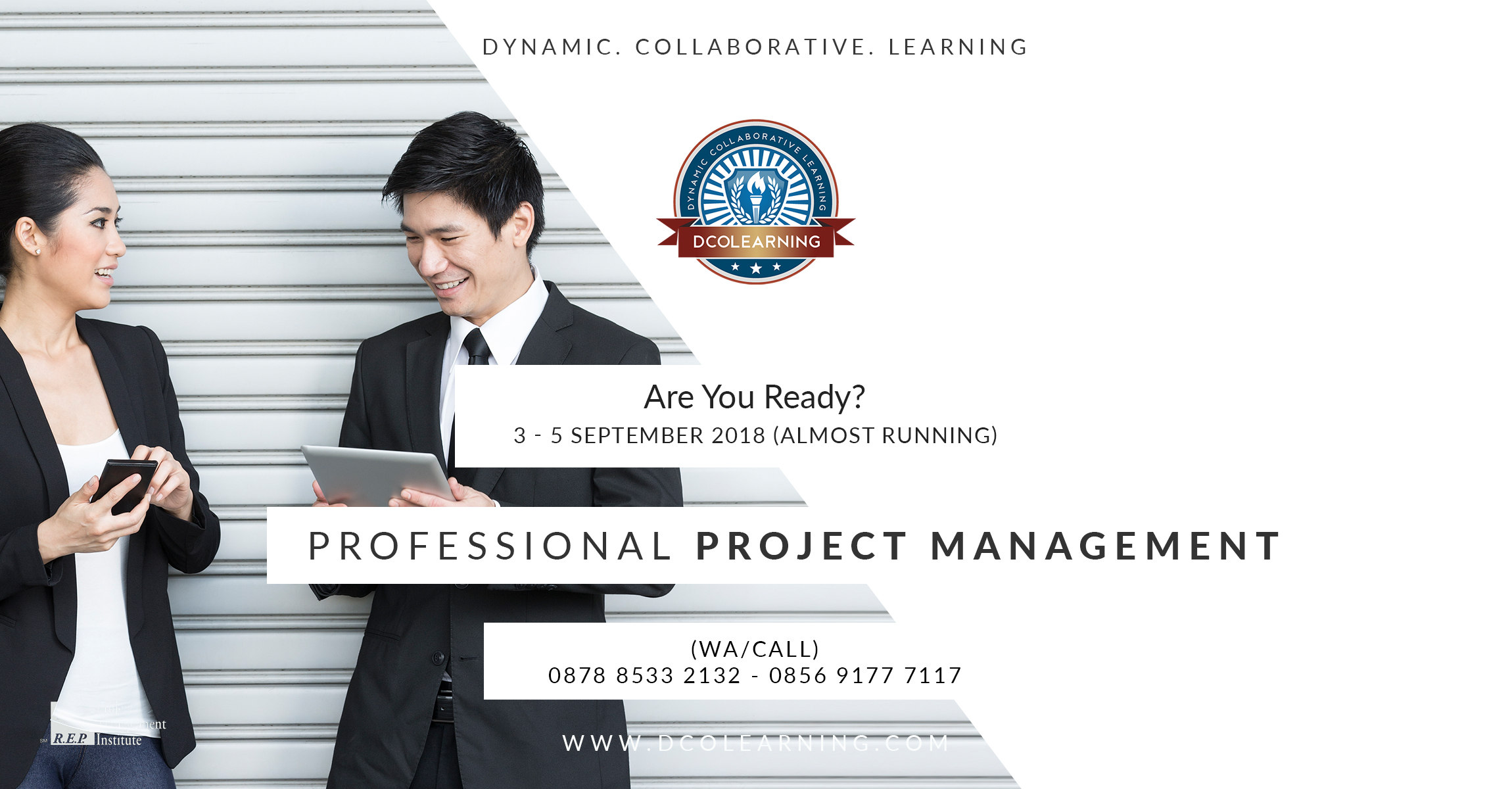 Professional Project Management